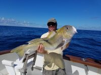 A man on a boat holding a large Golden Tilefish caught during a multi-day fishing trip in the Gulf of Mexico