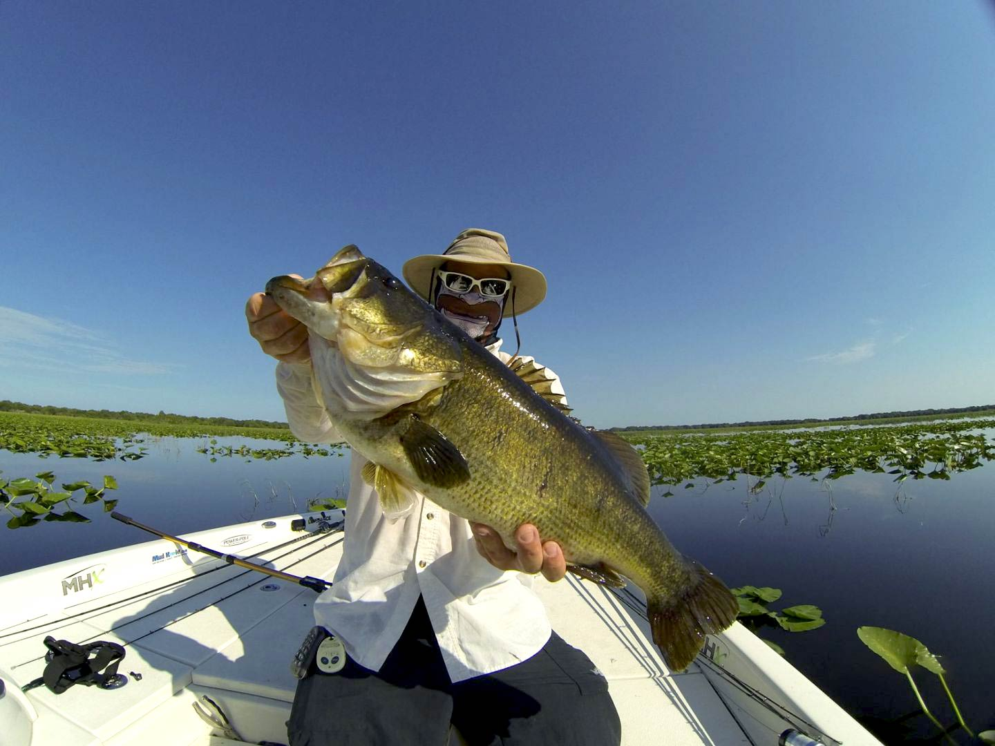 A man holding a big Largemouth Bass on a boat in the marshes of the Everglades, Florida