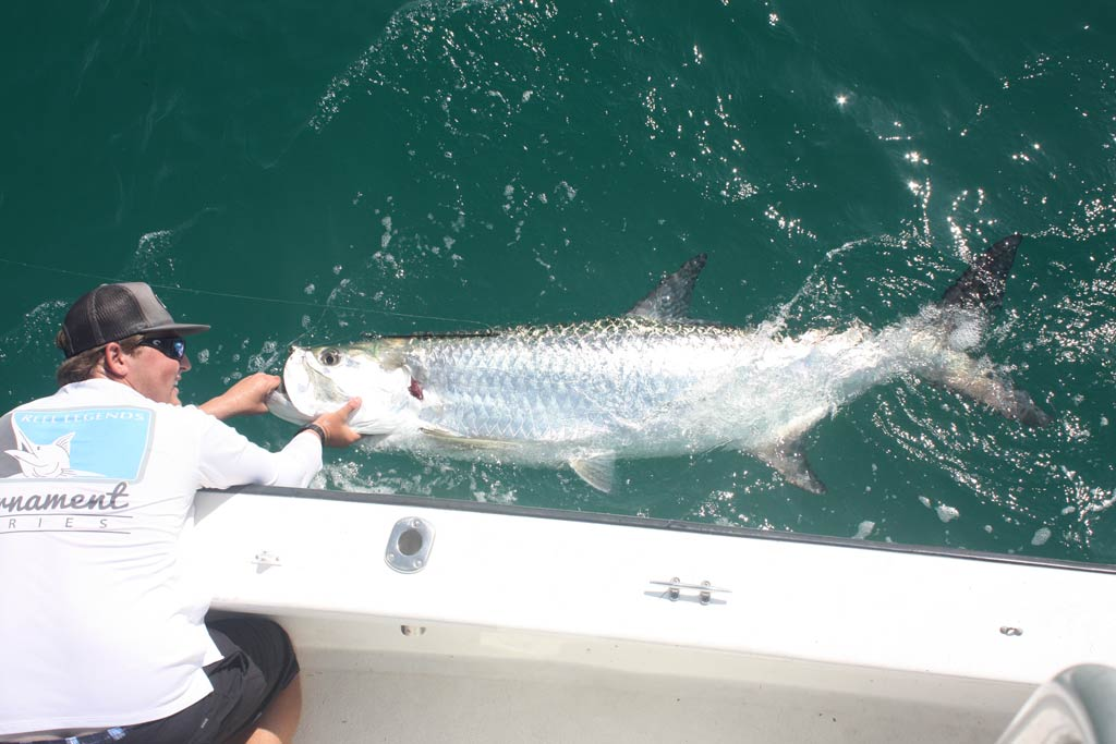 A fisherman holding a Tarpon next to a boat