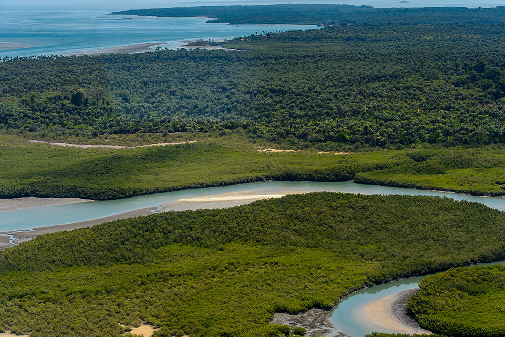 An aerial view of a winding water channel and dense vegetation on Guinea-Bissau's Bissagos Islands.