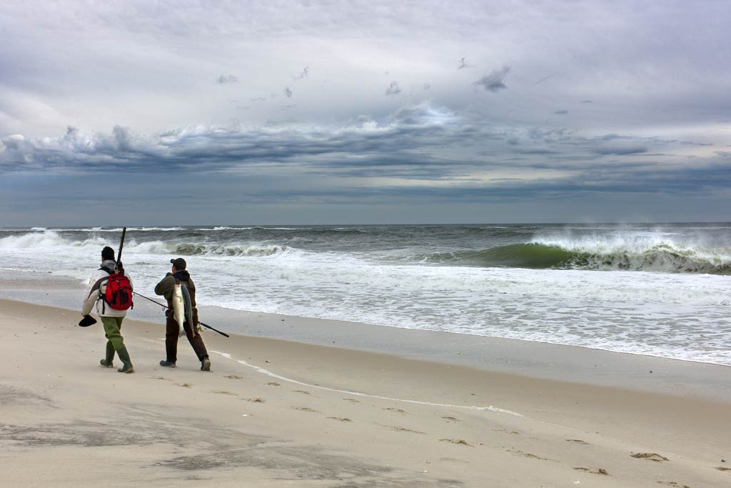 Two anglers walking along the beach while carrying their fishing gear and catch.