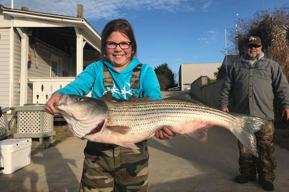A young girl holds a large Striped Bass caught while fishing in Virginia