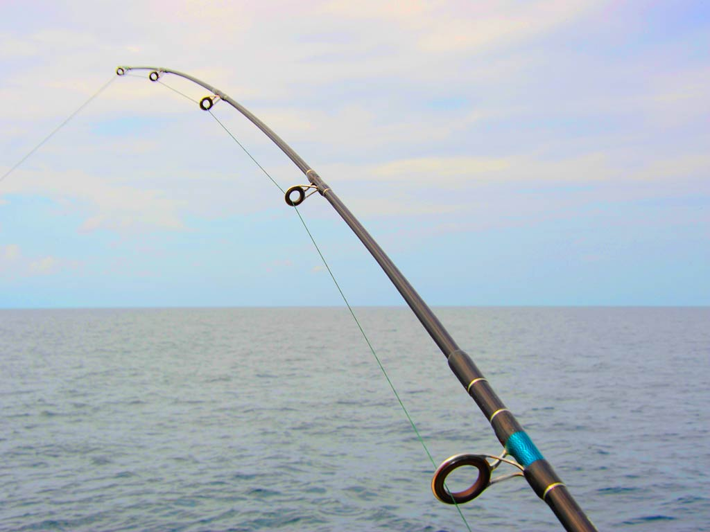 A view of a fishing rod with the ocean in the background while big game fishing