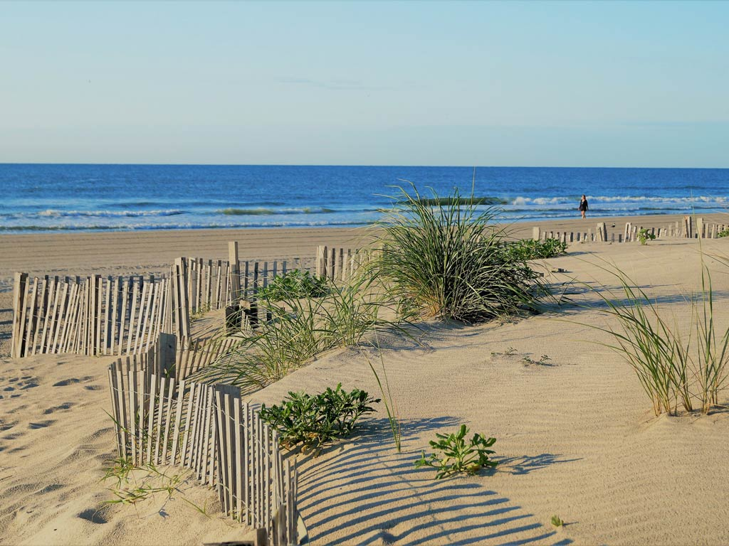 Stone Harbor Dunes on an early morning