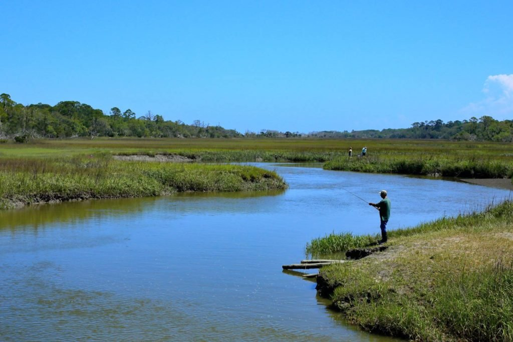 An angler fishing from shore on Clam Creek, Jekyll Island, Georgia