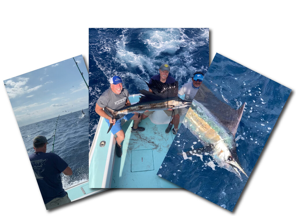 images from a Sailfish fishing trip
