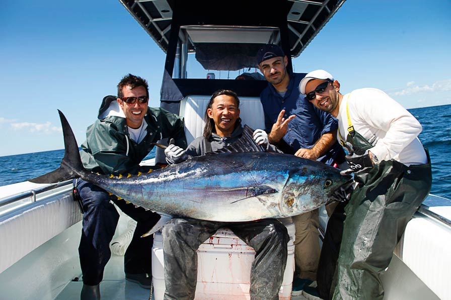 Three smiling fishermen standing on a boat, one fisherman sitting and holding a large Bluefin Tuna