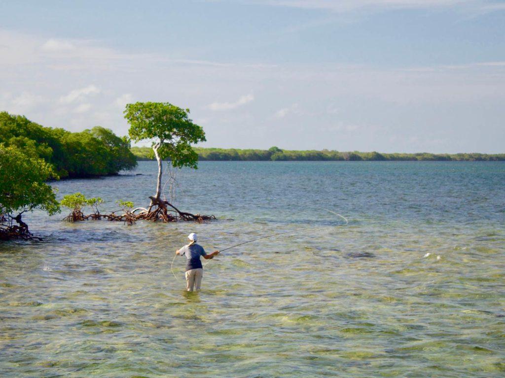Fly fishing for Tarpon off Islamorada in the Florida Keys