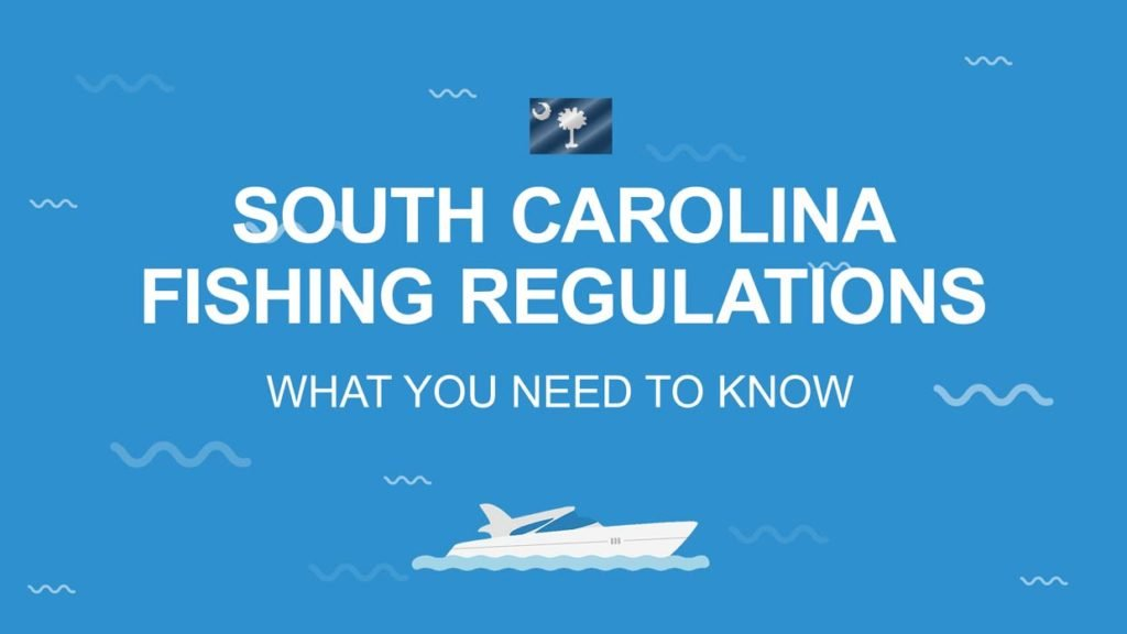 """An infographic stating """"South Carolina Fishing Regulations"""" on a blue background with the state flag"""