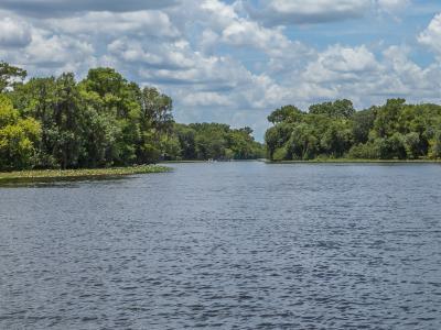 Fishing in St Johns River FL