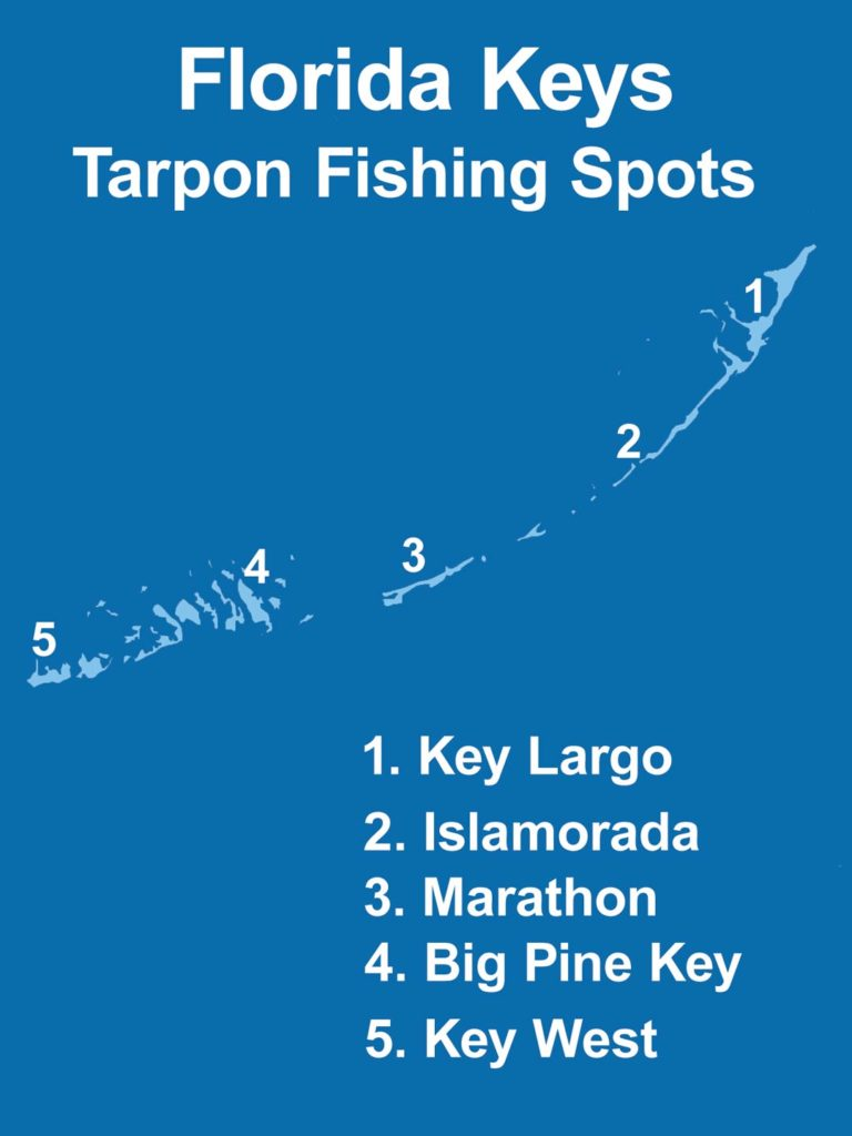 An infographic showing the top Tarpon fishing spots in the Florida Keys, including Key Largo, Islamorada, Marathon, Big Pine Key, and Key West