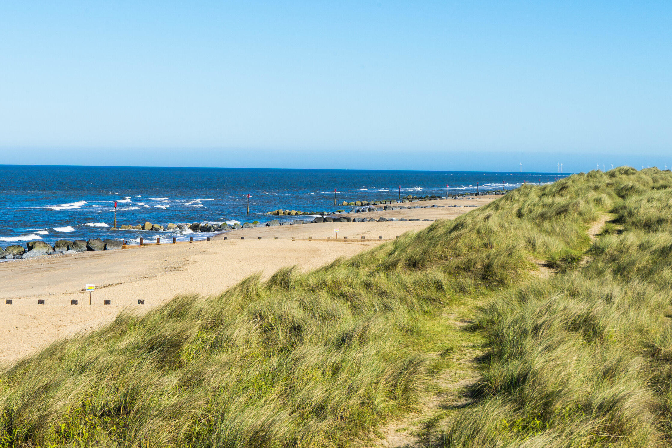 A view over the sand dunes covered in grass, and the ocean and beach in the back of the image in Norfolk, one of the best summer fishing destinations