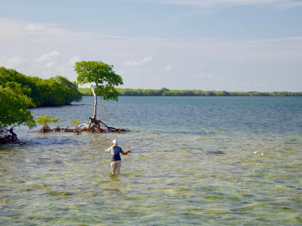 An angler wading in the waters off Islamorada and casting a fly fishing rod