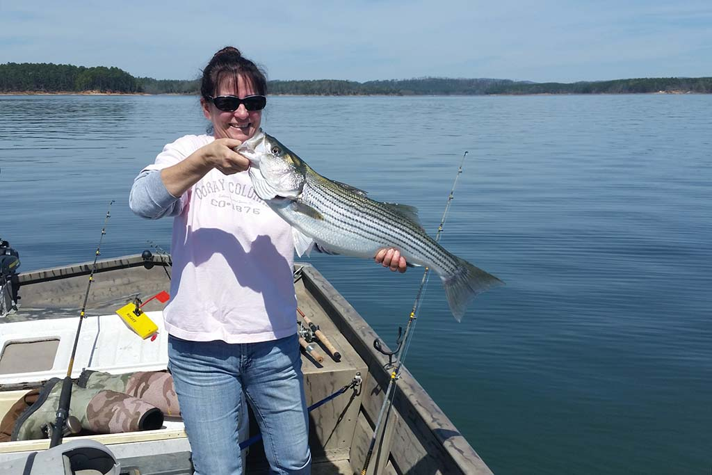 A lady holds a Striper onboard a charter boat on Lake Texoma
