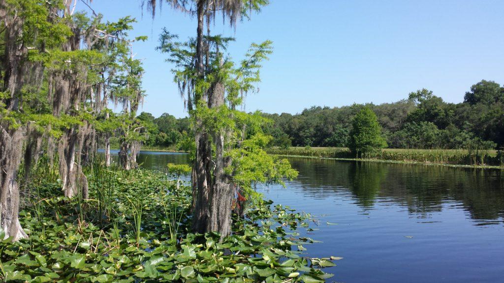 The Ocklawaha River in Florida