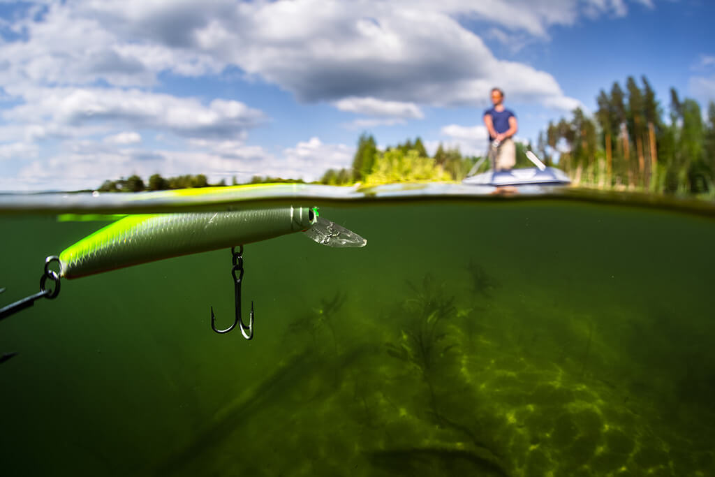 A split shot of a jerkbait artificial lure being fished on the surface