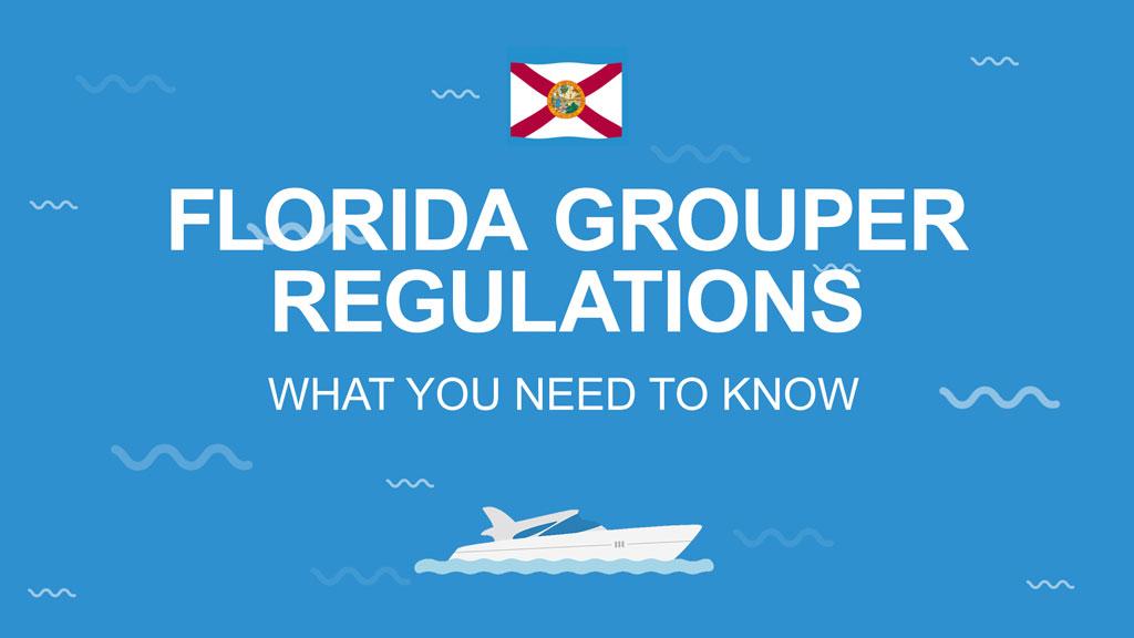 Florida Grouper regulations