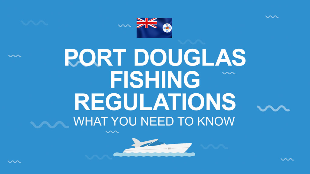 """An infographic with the Queensland flag and the text """"Port Douglas Fishing Regulations: What You Need to Know"""" set against a blue background"""