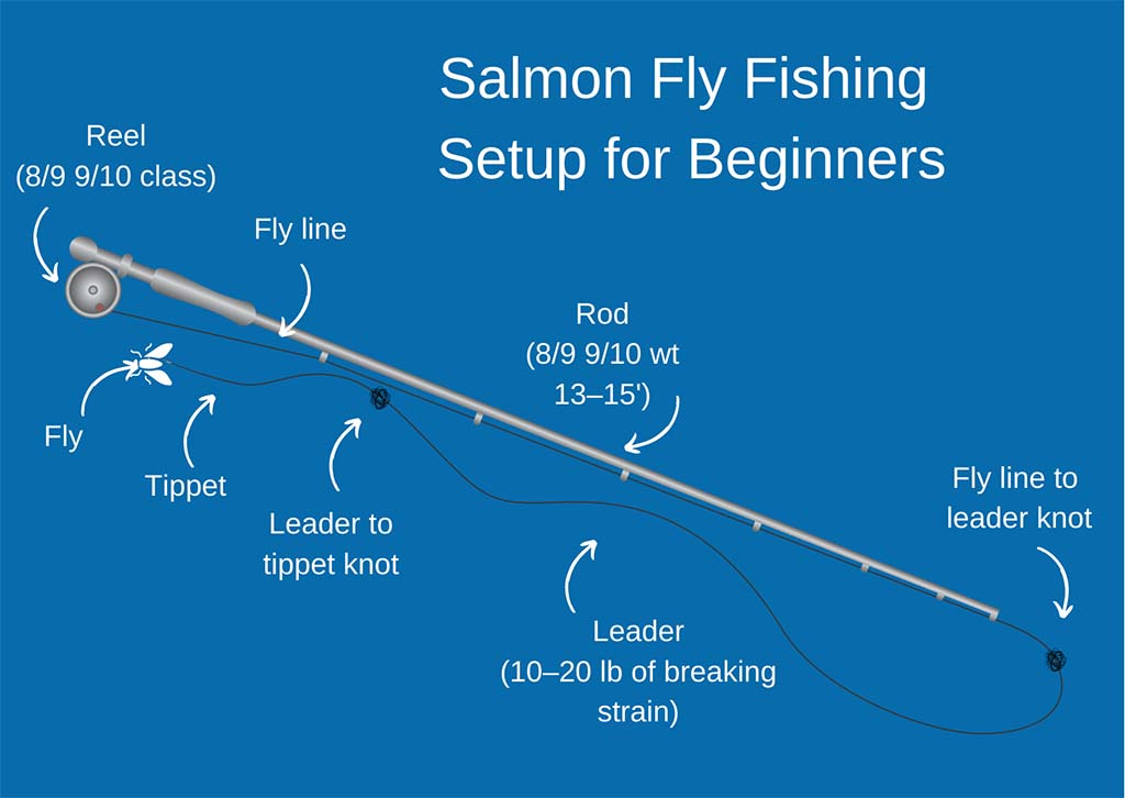 An infographic showing a Salmon fly fishing setup for beginners