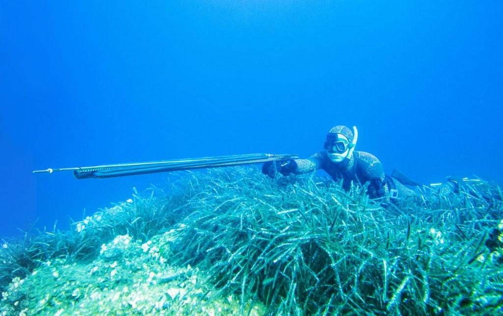 A spearfisher pointing their speargun under water