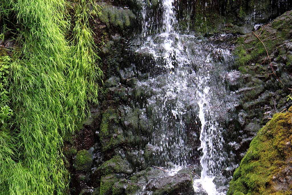A view of Umtanum Falls in Washington, showing the waterfall and greenery