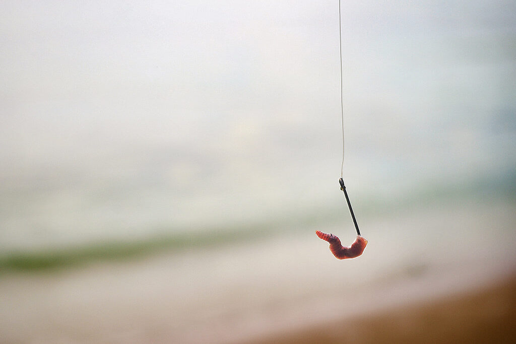 A worm dangling on a fishing hook with beach and sea behind it