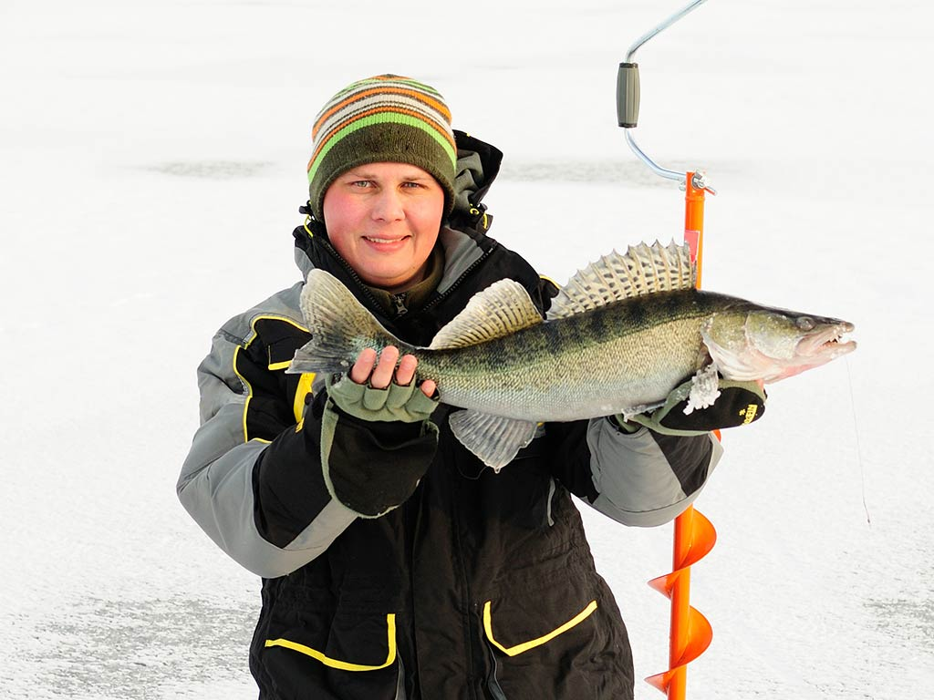 Angler kneeling on ice while holding a Walleye he just caught.