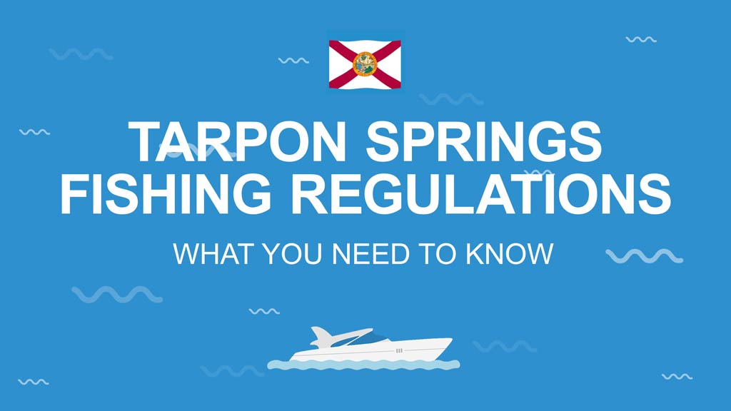 An infographic that says Tarpon Springs Fishing Regulations - What you need to know on a blue background with the Florida state flag above and the image of a boat below the text