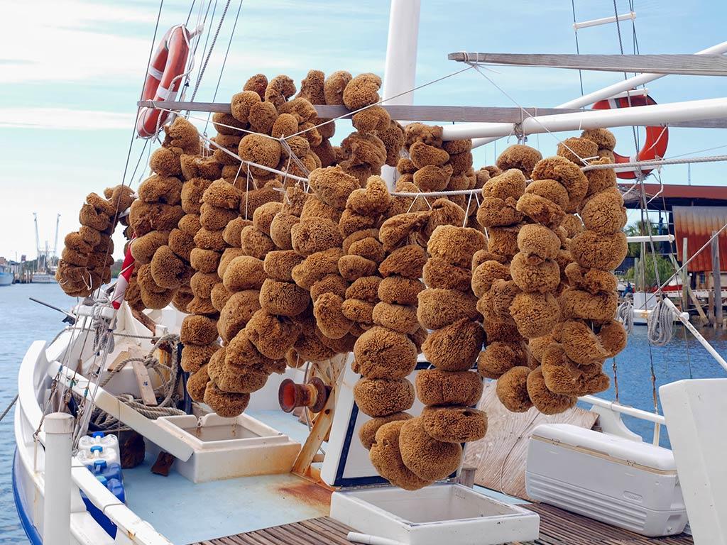Natural sponges displayed on a Tarpon Springs sponging boat