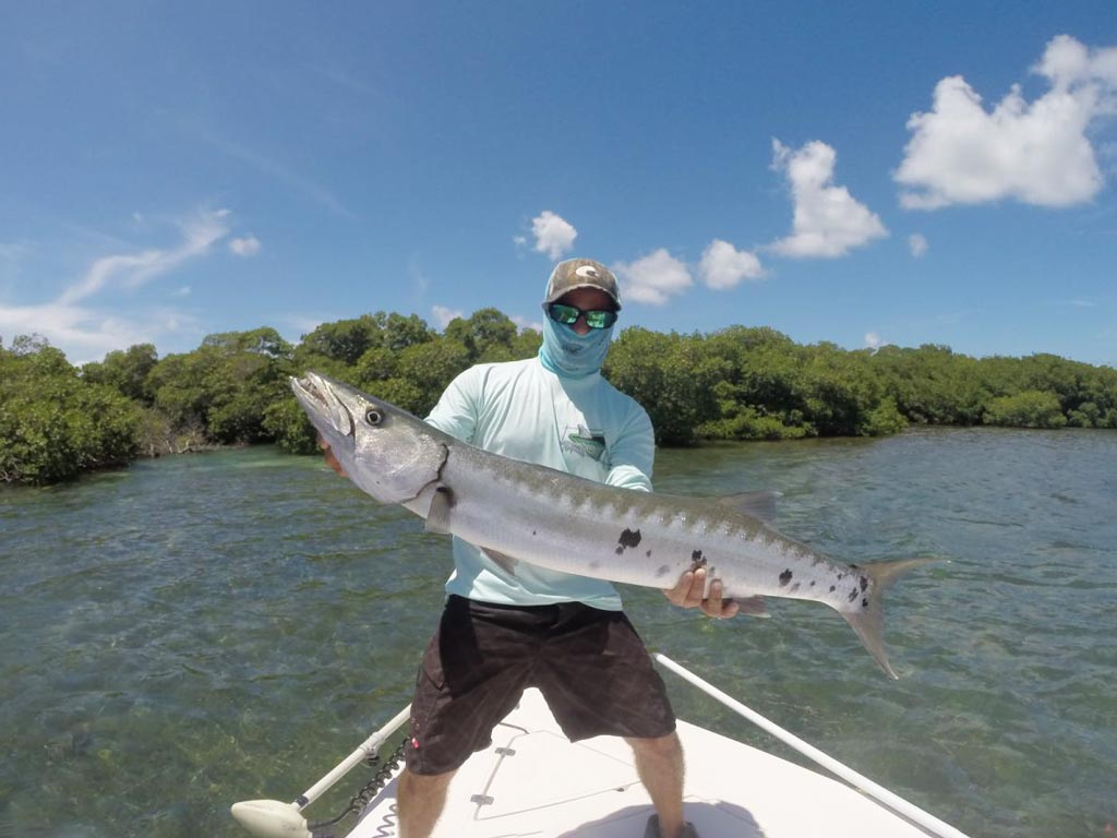 An angler on a boat holding a big Barracuda.