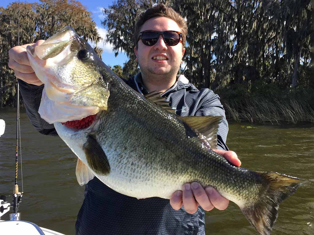 A fisherman holding a Largemouth Bass in Florida.