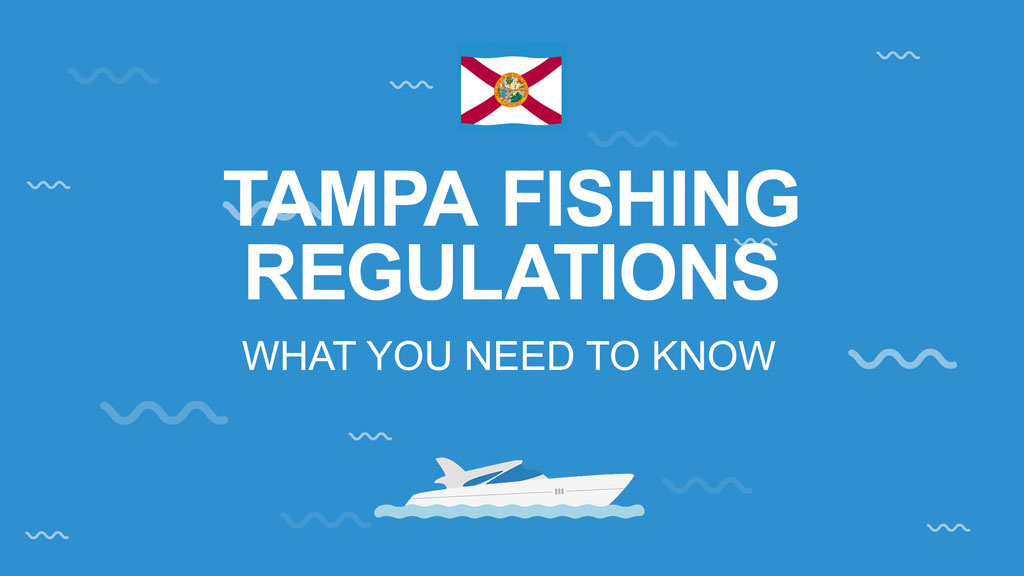 An infographic on blue background with the flag of Florida and white text that says Tampa fishing regulations – What you need to know.