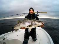 An angler with a fishing rod in his mouth holding a large Striped Bass caught while topwater fishing