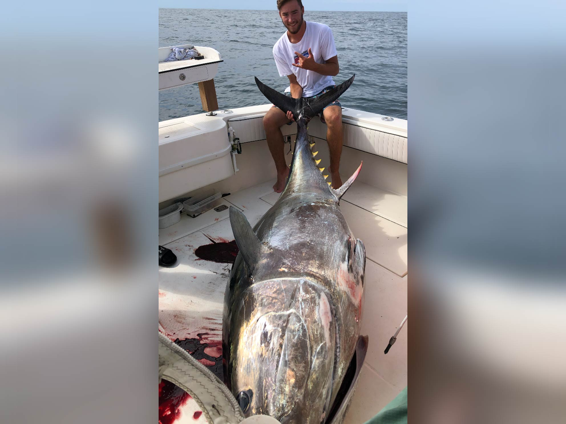 A fisherman sitting in the corner of a boat, holding the tail of a trophy 900 lb Tuna