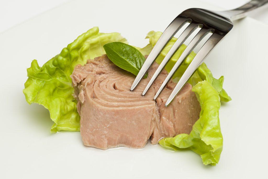 a chunk of canned Albacore tuna