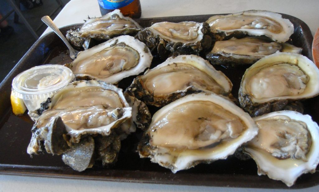 a plate of world famous Apalachicola oysters