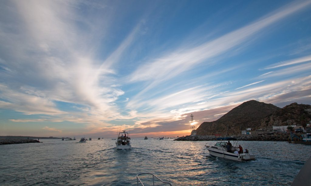 Fishing Boats in Cabo San Lucas, heading out to sea at sunrise