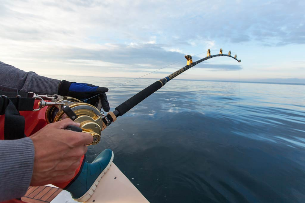An angler on a big game fishing trip, reeling in a fish from the boat.