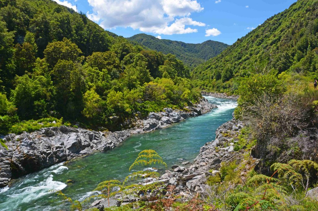 Clean Buller River, New Zealand