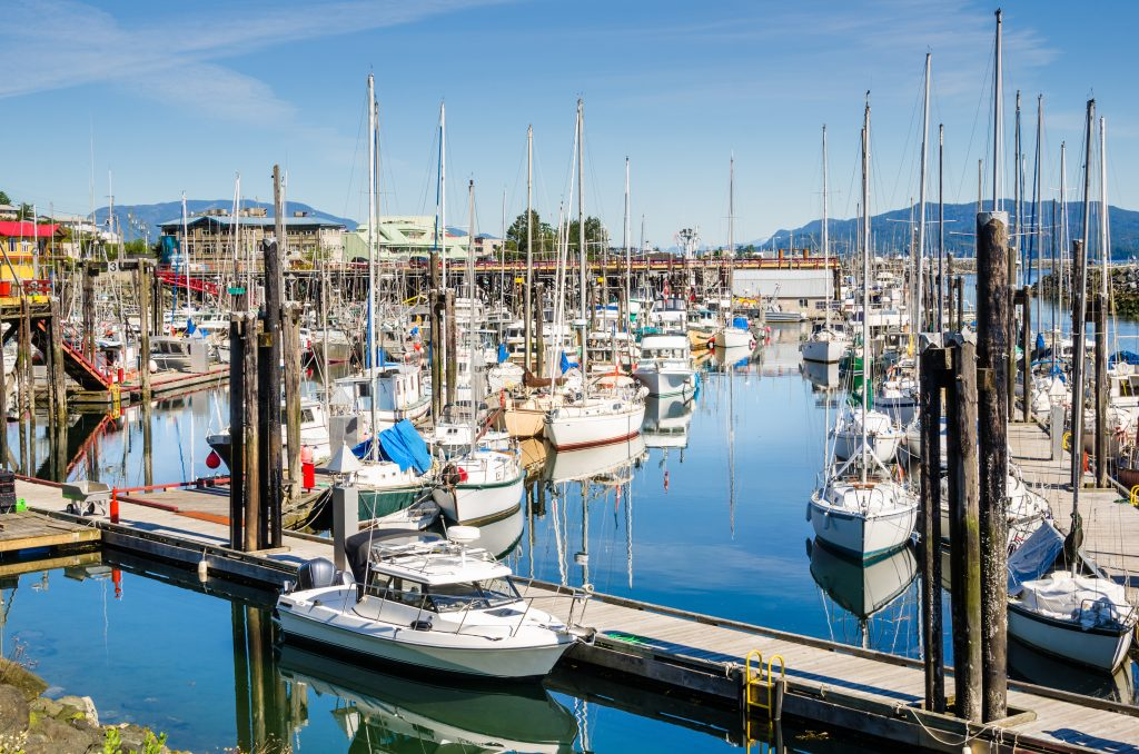 A photo of the main harbor on Campbell River