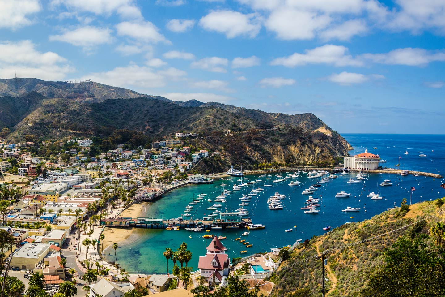An aerial view of boats docked in the Avalon Bay on Catalina Island.