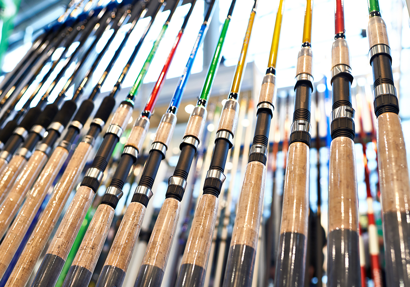 A selection of fishing rods with different colored blanks