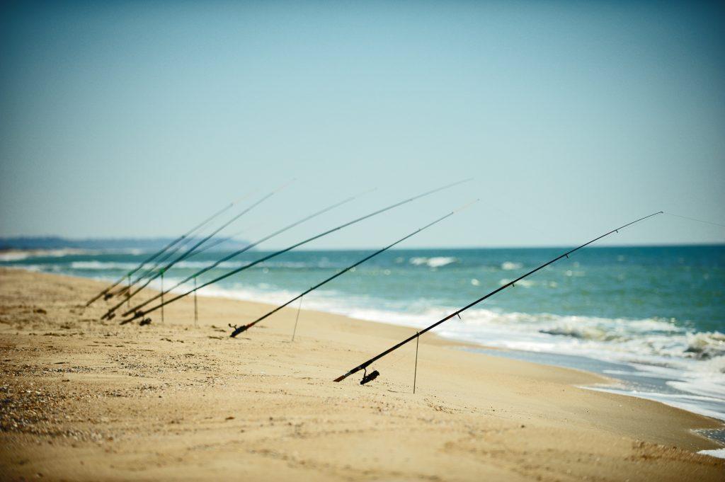 Fishing rods set up on a sandy beach