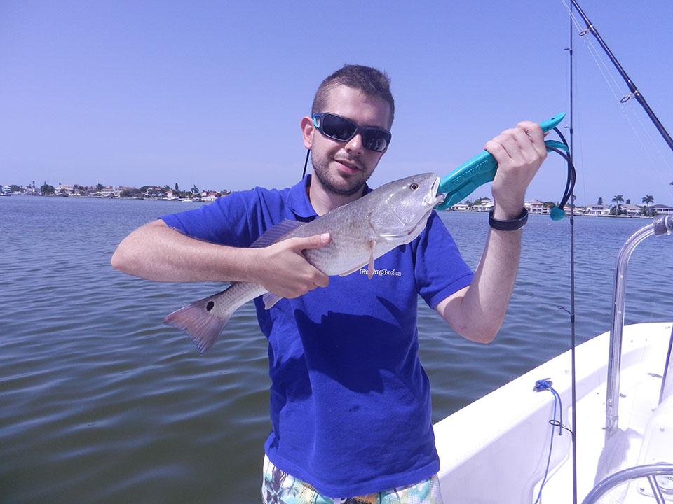 Tampa bay fishing report shark and redfish magic with for Tampa bay fishing reports