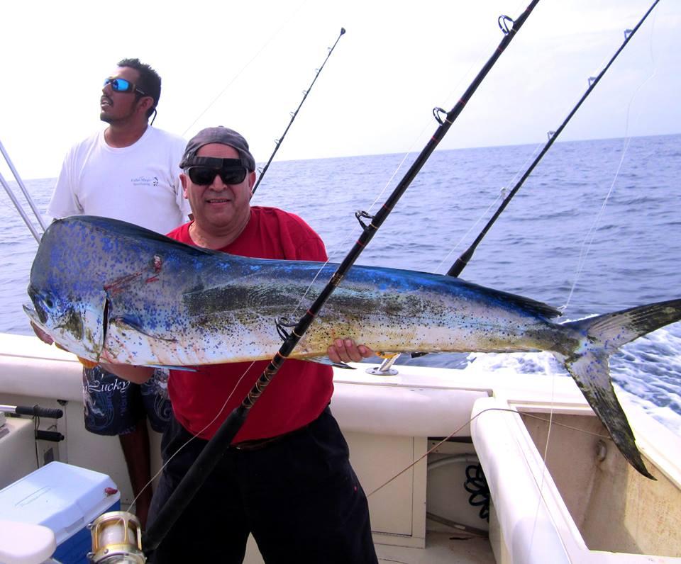 Dorado fishing in Cabo: an angler holding a large Dorado (Mahi Mahi) on a fishing boat