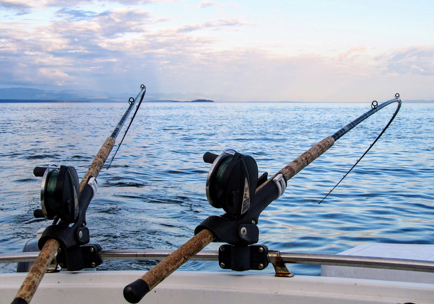Two fishing rods secured on the side of a boat at sea. The rods are bending from a fish on the line.