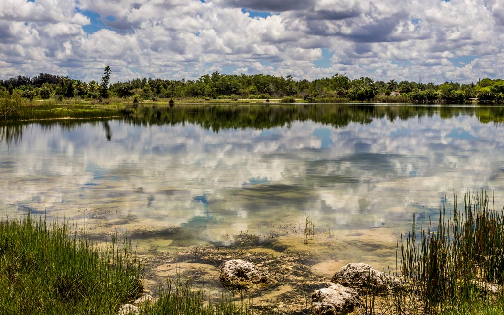The Everglades Lake's surface reflects the sky