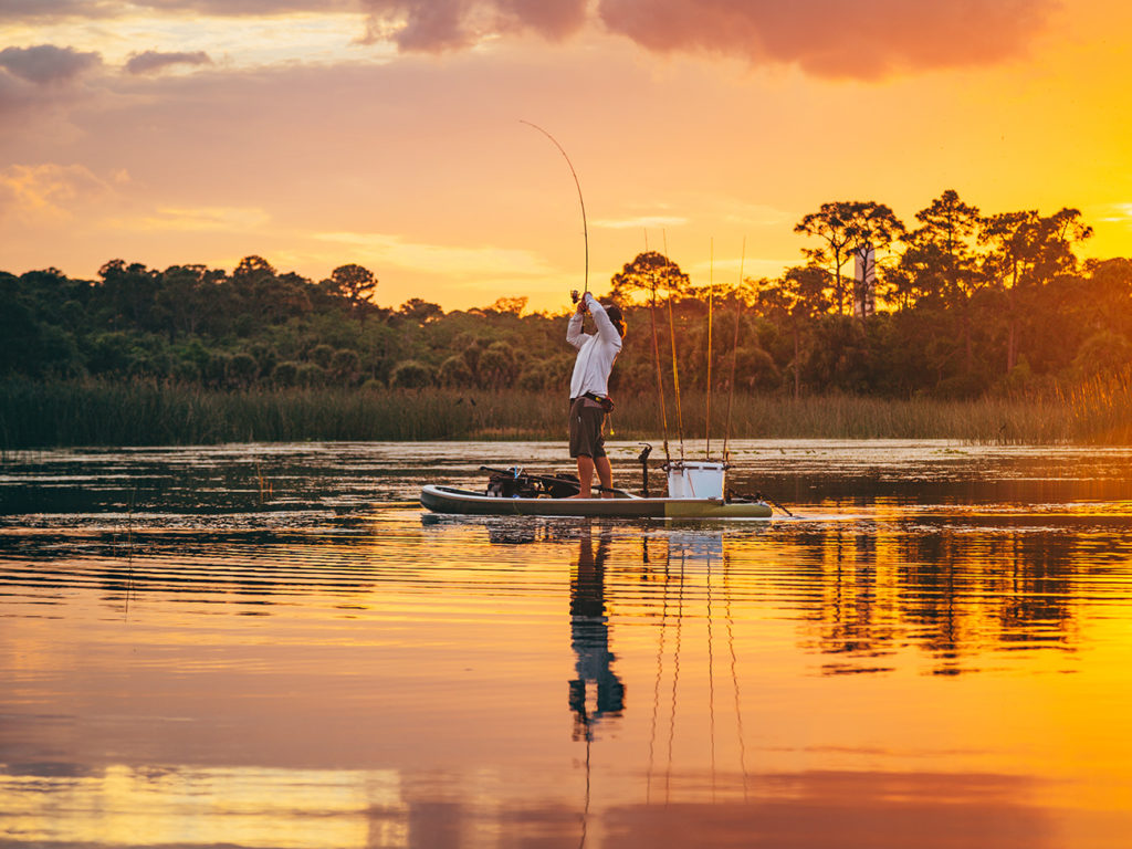 An angler on a paddleboard finesse fishing for Bass at sunset
