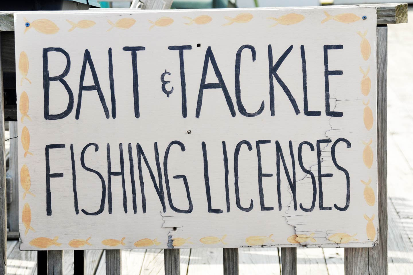 Signage signalling the sale of bait, tackle, and fishing licenses.