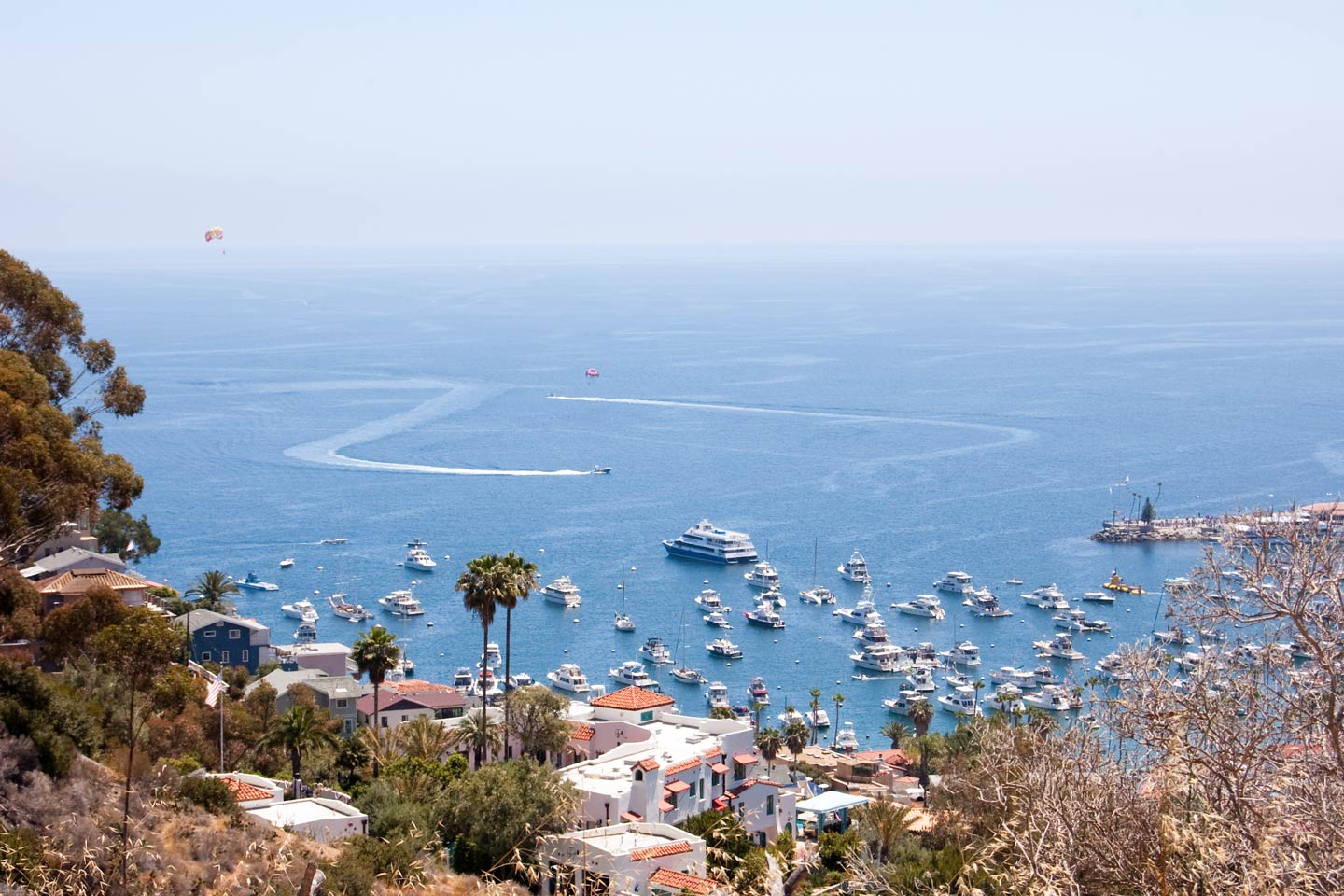 An aerial view of Avalon Harbor, where most of Catalina's charter fleet docks.